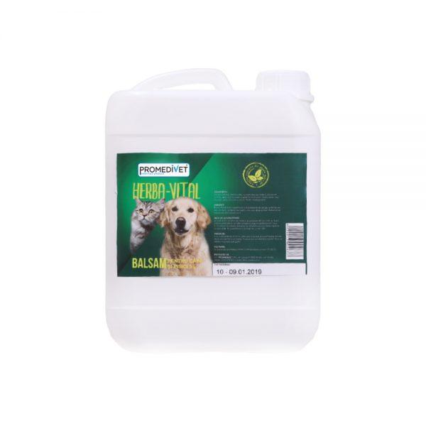 BALSAM-HERBA-VITAL-Pentru-Câini-Şi-Pisici-–-5-L-promedivet