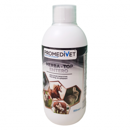 HERBA-TOP ENTERO  – afecţiuni digestive – 500 ml
